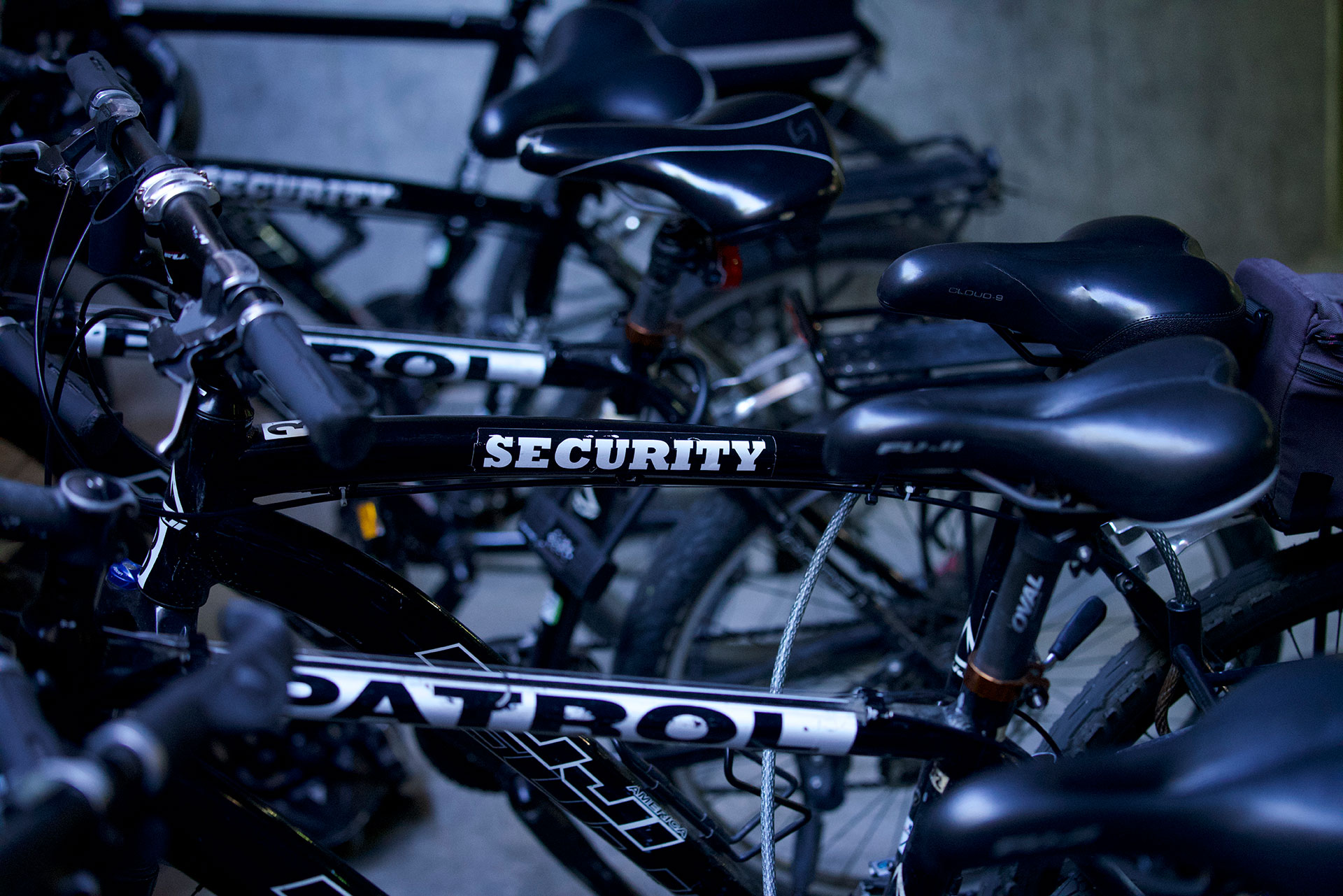 security bike